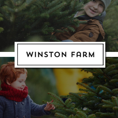 Winston Farm Christmas Trees